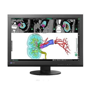 """EIZO RadiForce MX242W - LED monitor - 24.1"""""""
