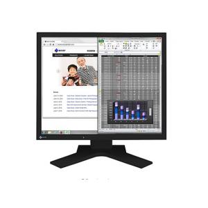 """EIZO FlexScan S1934H - LED monitor - 19"""""""